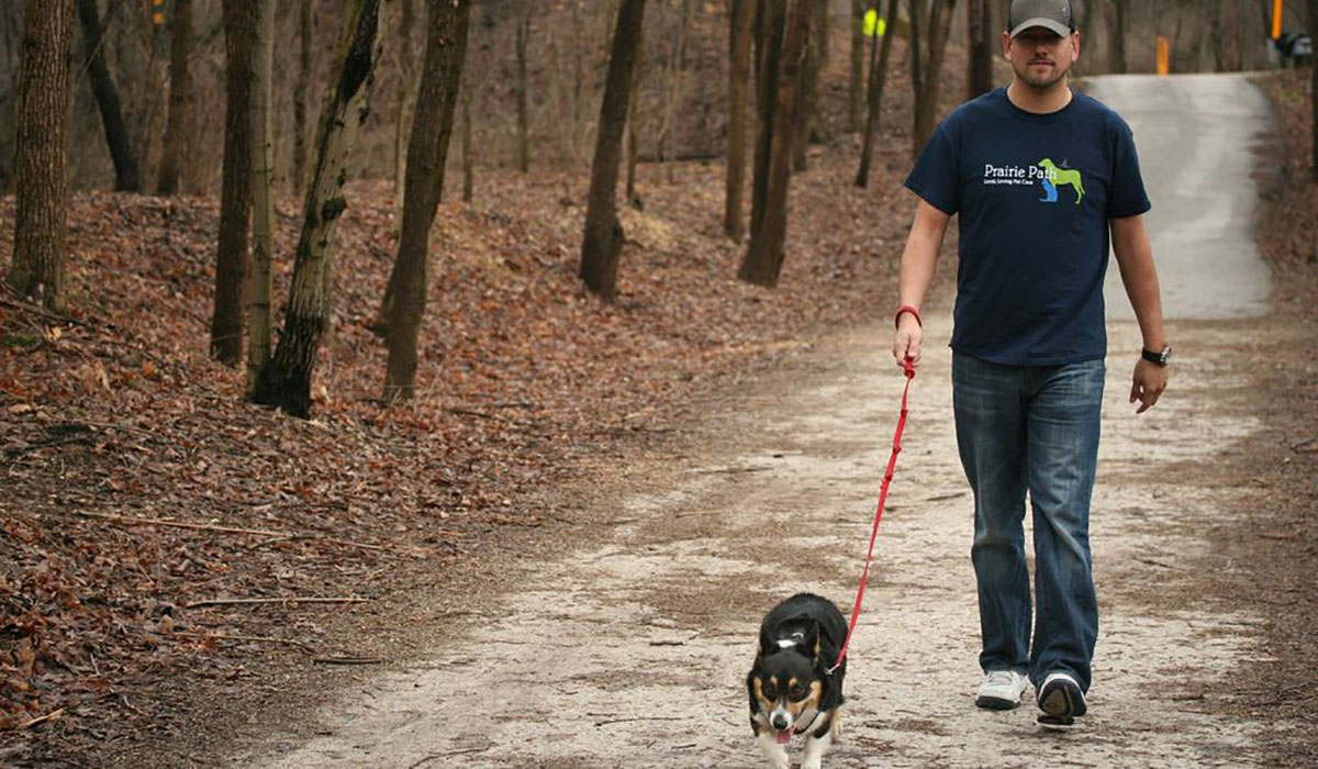 Photo of a dog walking on the IL Prairie Path