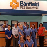 Photo of the friendly staff at Banfield Pet Hospital in Nashville